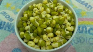 legumes-500